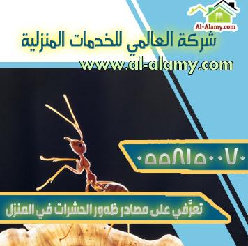 تعرَّفي على مصادر ظهور الحشرات في المنزل